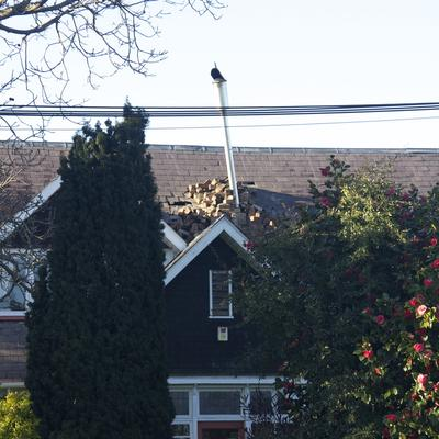 Unfortunately some of these chimneys have fallen on top of the houses and caused further damage.